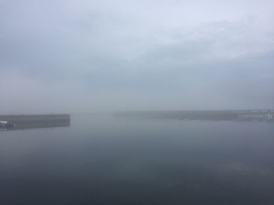 濃霧。すぐそばの堤防がぼんやりとしか見えない。
