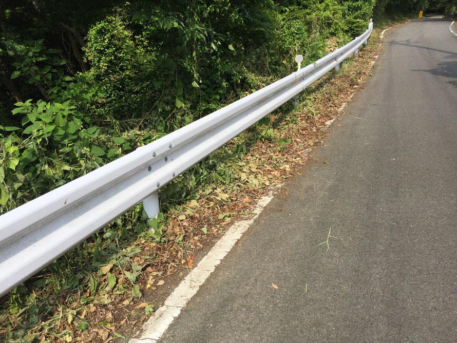県道清掃の後の道。手前の桃取の清掃エリアは白線が見えるまできれいに掃かれているが、答志の人が清掃した後は少し大雑把な仕上がりになっているため、区切れ目がくっきりとわかる。