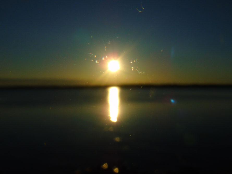 Ich bin die Abendsonne 2....Quelle: www.lichtwesenfotografie.com