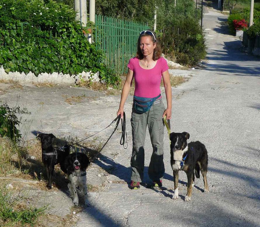 Hundetraining mit Hilfe der Tierkommunikation