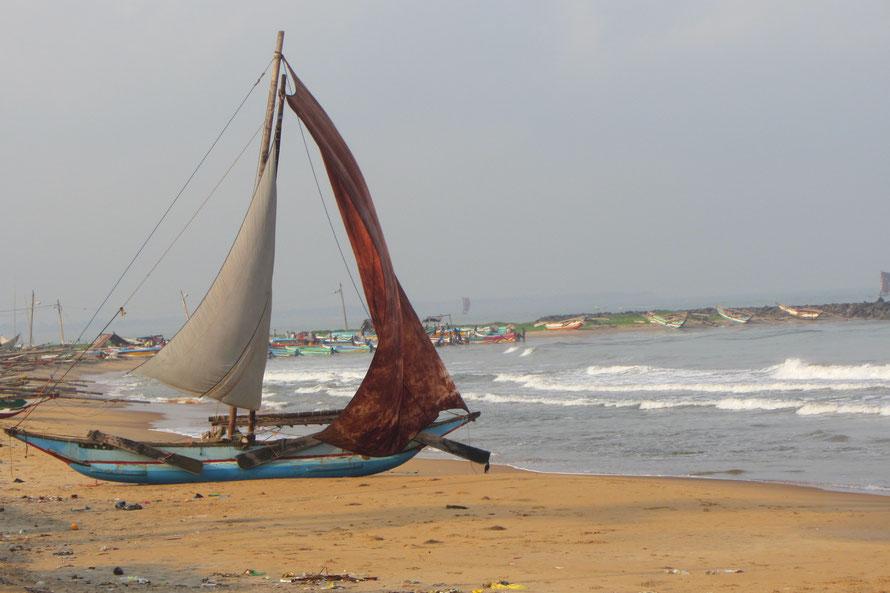 Negombo : village des pêcheurs