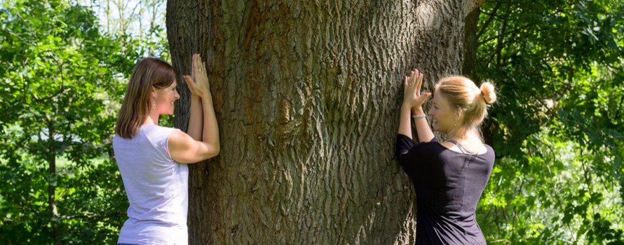 Yoga Reise Sauerland