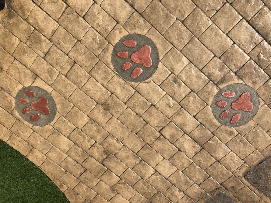 犬 DOG 放し飼い ドッグ ガーデン 遊び 走り回る DIY スタンプコンクリート デザインコンクリート 庭