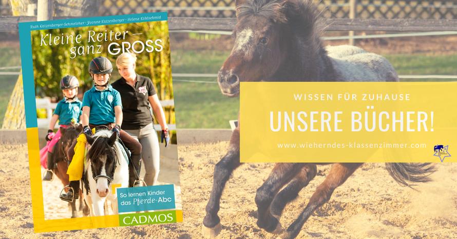 Wieherndes Klassenzimmer: DAS Konzentrationstraining mit Pferd - alle Bücher rund um das Pferdetraining.