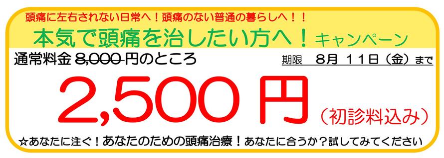 あなたの一歩を応援しますキャンペーン。1回8,000円のところ、お試し2,500円。あなたの頭痛に効くか?1回受けてみてください。キャンペーン期限12月12日まで