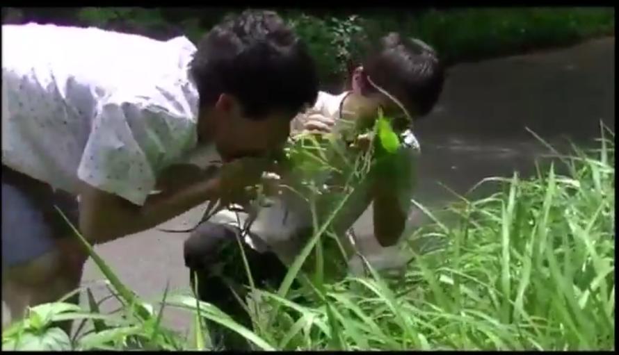 ▲野草を食べる保井さん