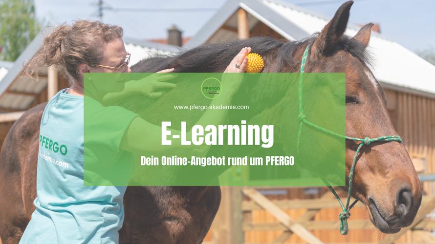 PFERGO - 1. Akademie für Pferdeergotherapie: Unser E-Learning Angebot rund um die Ergotherapie für Pferde.