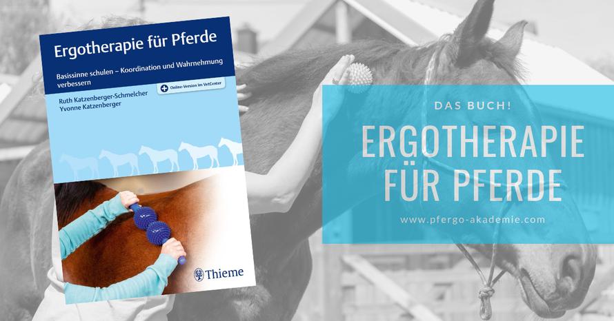 Ergotherapie für Pferde: Basissinne schulen - Koordination und Wahrnehmung verbessern. Das große Buch zum Thema Pferdeergotherapie.