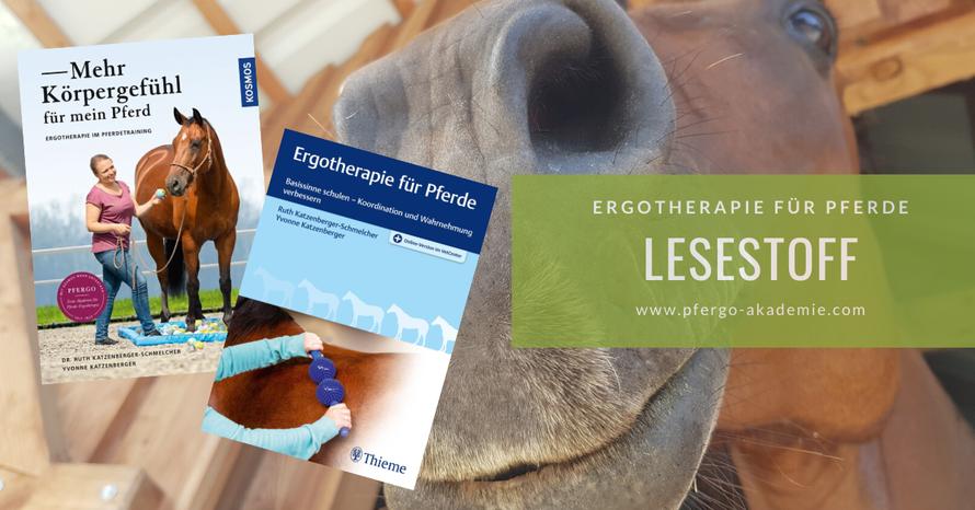 Ergotherapie für Pferde: Bücher und Webinare zum Thema.