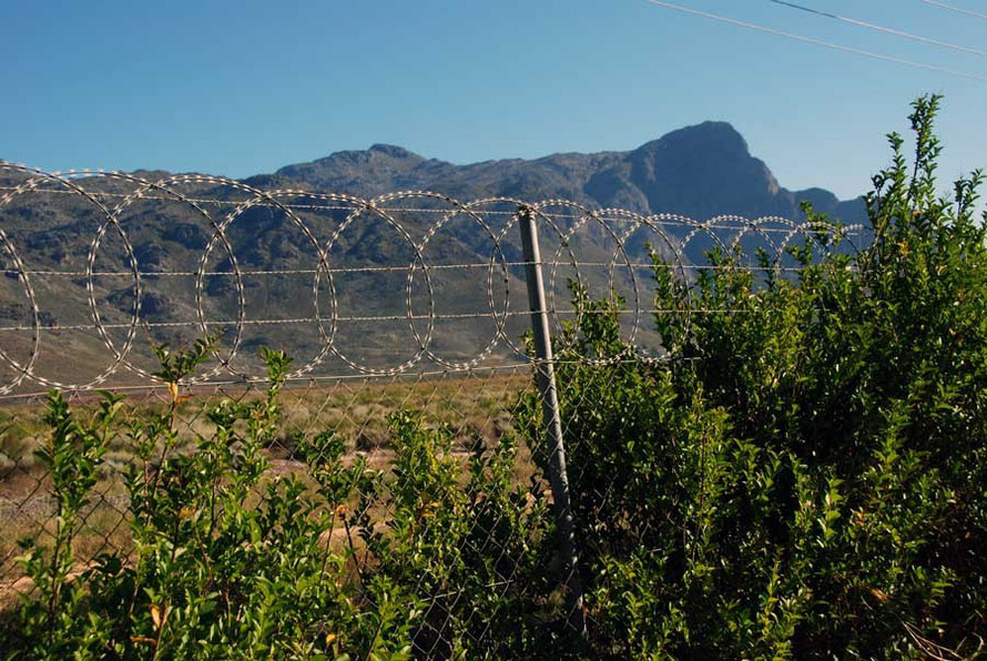 Security Fence, Franschhoek