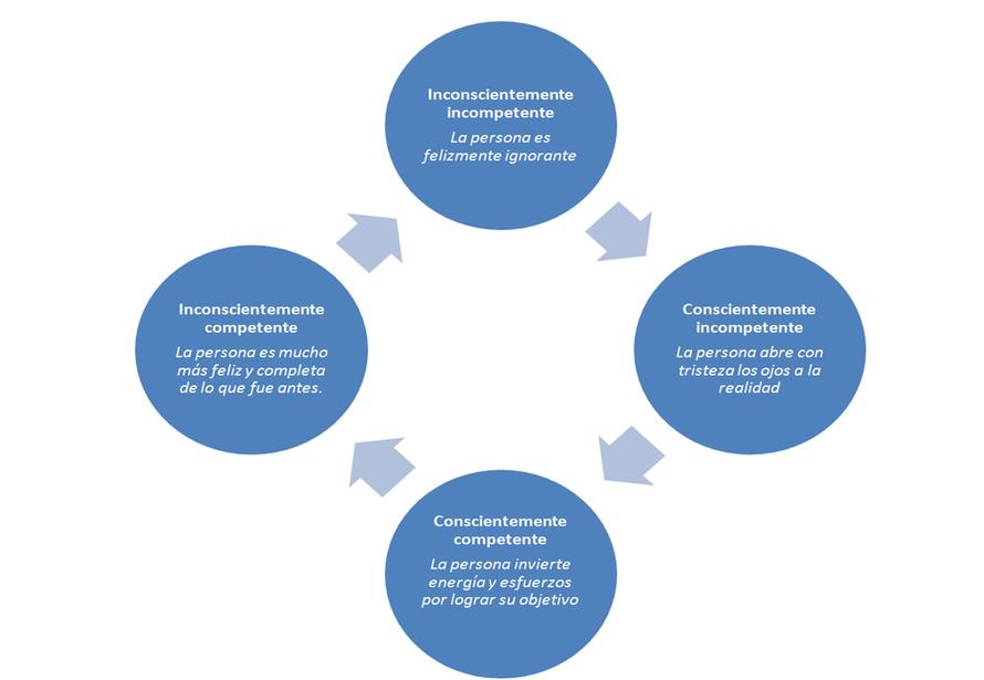 Las cuatro fases del ciclo de aprendizaje