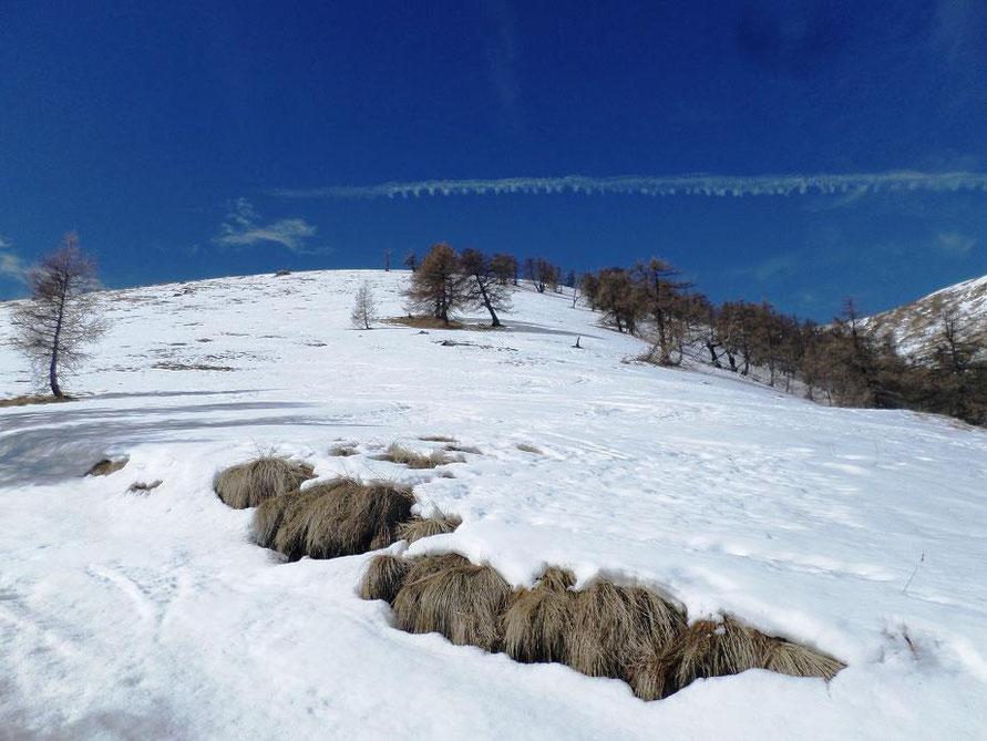 La dernière montée bien enneigée en février
