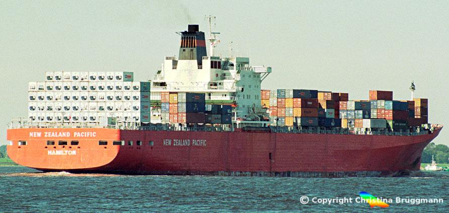 """P&0 Kühlcontainerschiff """"NEW ZEALAND PACIFIC"""" aud letzte Reise vor Abbruch, 2002"""