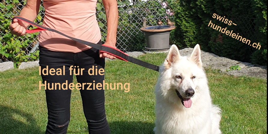 swiss hundeleinen, Hundeleine, Hundeleinen, Hundeerziehung, Veganer geeignet, Paracord, Kurzführleine, Hundeschule