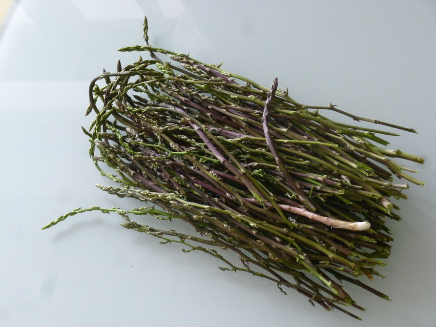 Beim wandern fӓllt der findige Blick auf die wilden Spargeltriebe an den Wegrӓndern. In Olivenöl gebraten schmeckt er lecker zu Pasta.
