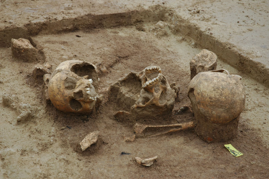 Schädeldepot Grabung Herxheim (Außengraben)