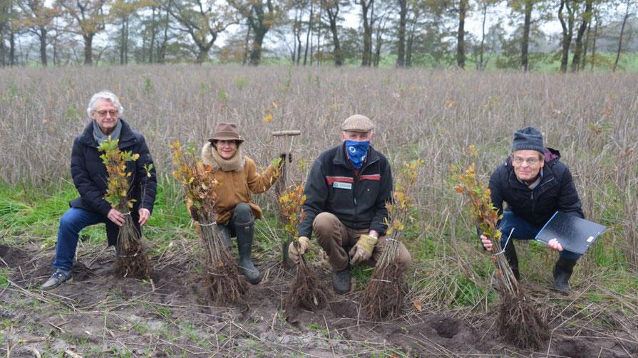 Eine symbolische Geste zum Beginn der Pflanzung: Heinz Wiedemann (Rotary), Ute Pfestorf (Rotary Präsidentin), Jens Bosse (Ex-Rotary-Präsident) und Christian Groß (Stadt Quickborn) v.l.