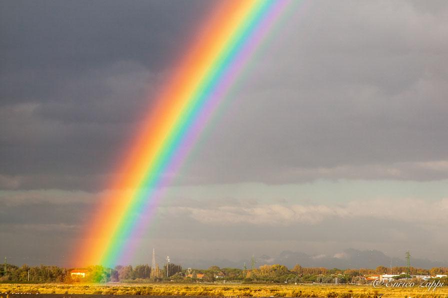 Un meraviglioso arcobaleno alle Saline di Cervia. Che sia foriero di un bel sereno? Comunque sia la scomposizione della luce nei suoi colori primari, messa ancor più in risalto dalle nubi di un bel color grigio, è un fenomeno che ancora mi emoziona!