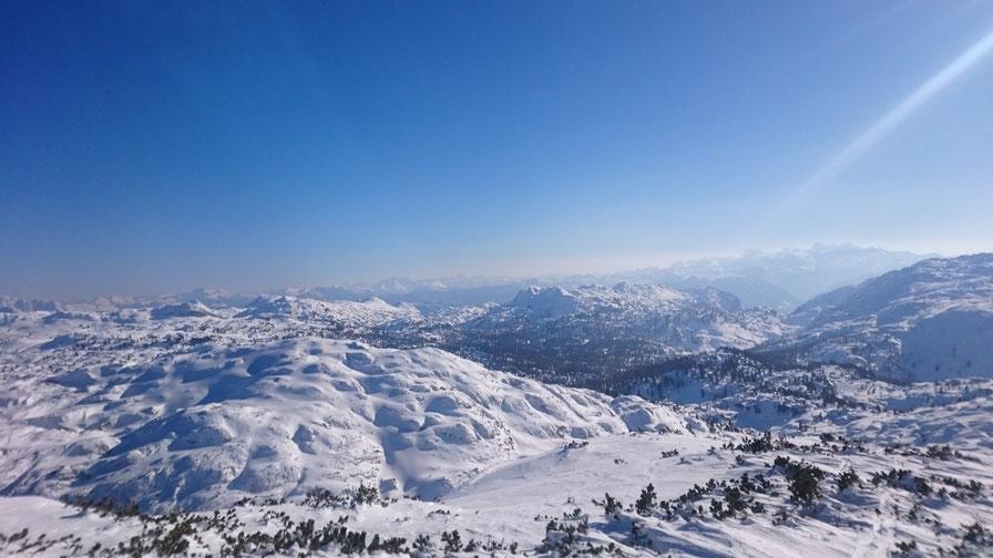 Ortovox; Merino; Hoody; Outdoor;Hiking; Backpacking; Ski tour; Hund; Berg Hund Tal; Schafwolle
