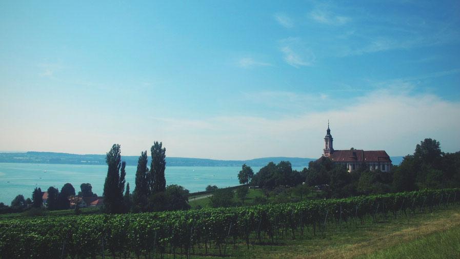 bigousteppes suisse lac constance route camion église vignes