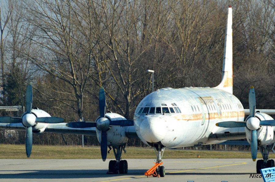 IL-18 (DDR-STG)