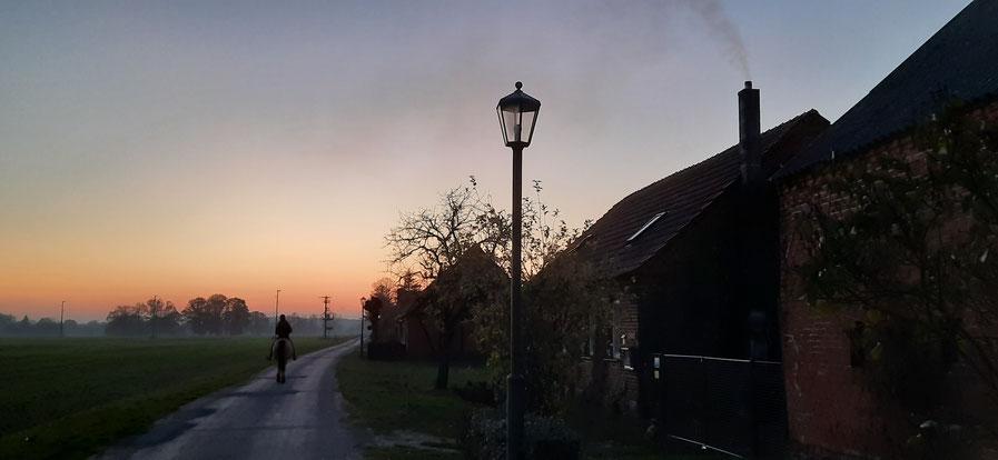 Abendritt in der Prignitz, Urlaub mit Pferd und Hund, Übernachten im Zirkuswagen