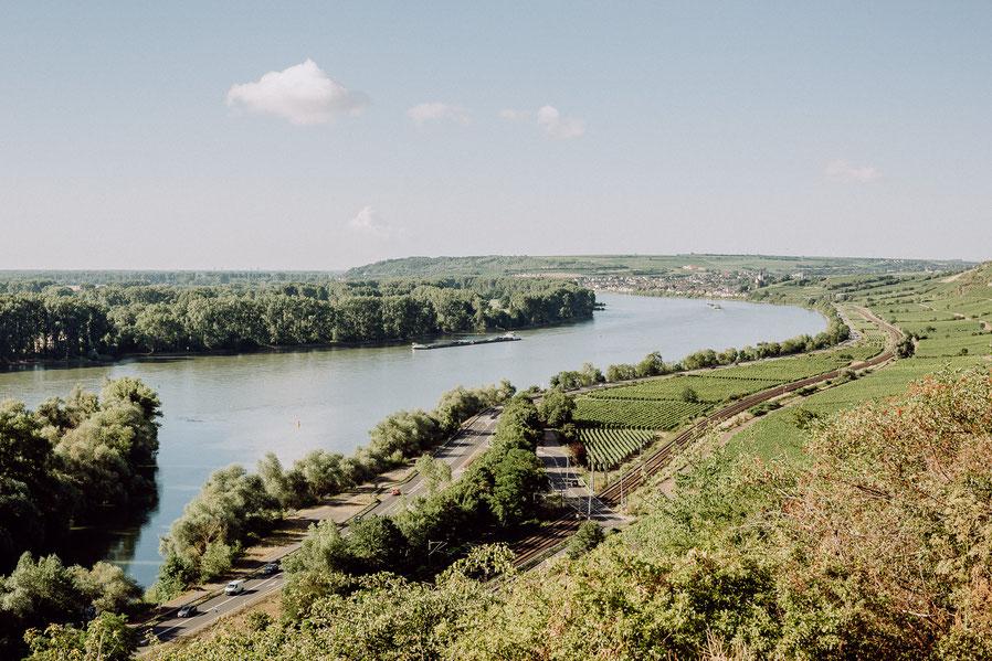Blick über den Rhein bei Nackenheim