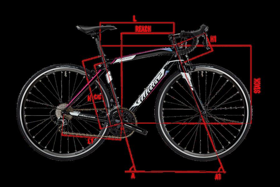 Wilier Luna Geometrie Italian Cycle Experience