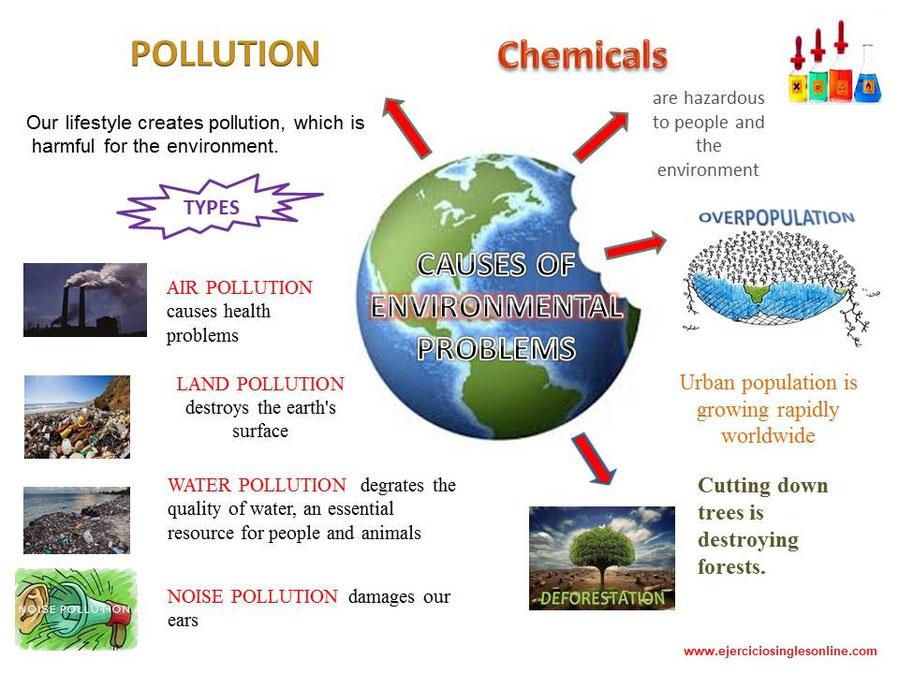 Causas de los problemas medio ambientales.