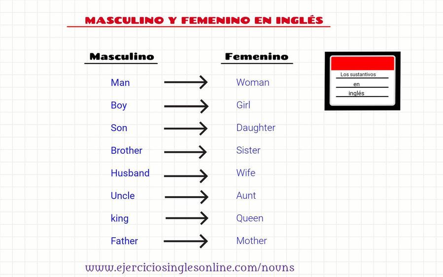 masculino y femenino en inglés