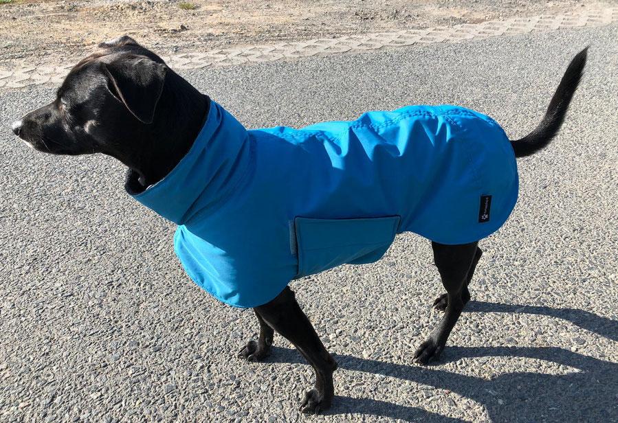 Regenmantel Hund Maßanfertigung, Hunderegenmantel maßgefertigt, Hunderegenmantel