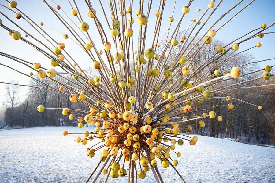 David Klopp, Land Art, Vitaminfeuerwerk