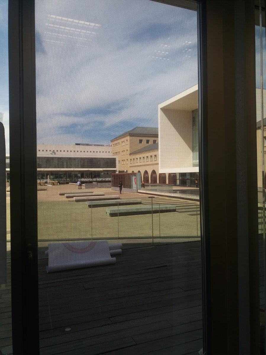 Vinilo microperforado visto desde el interior de las oficinas. Se ve el exterior perfectamente.