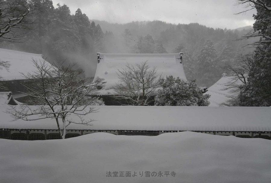 平成30年1月・永平寺法堂正面より雪の永平寺