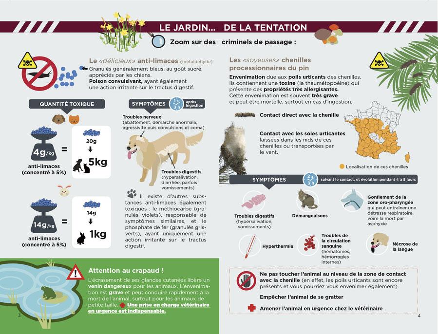 ec chiens comportementaliste ceducateur anin et laboratoire TMV vous montre que les produits anti limaces sont dangereux pour les chiens, les crapauds dangereux pour les chiens et les chenilles danger pour les chiens et chats