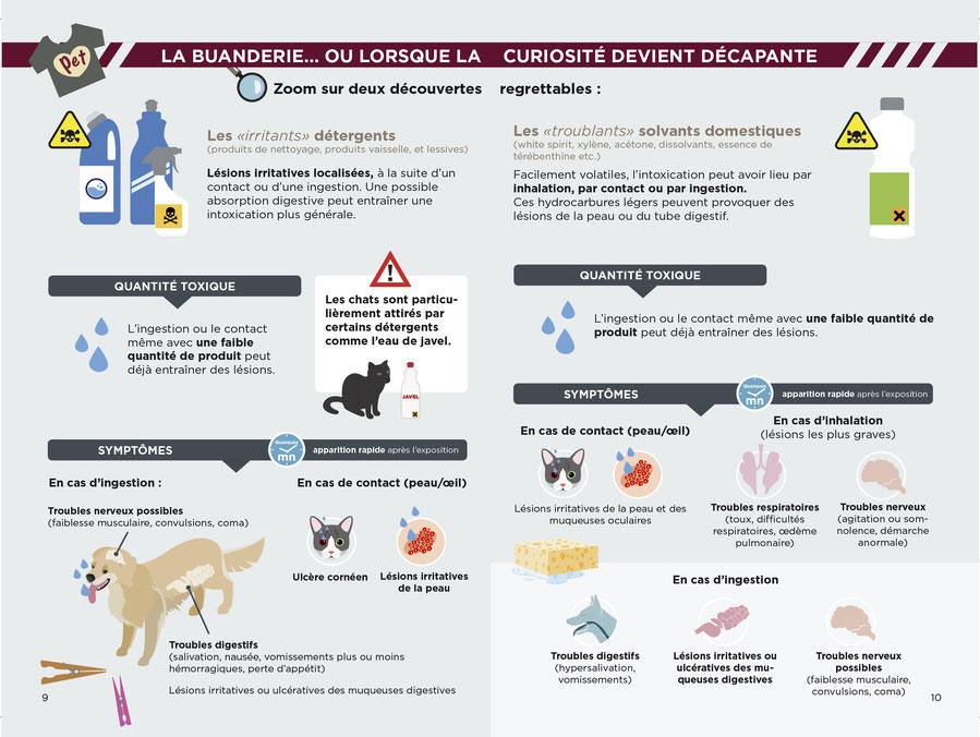 ec chiens education canine vous informe que les detergents sont des produits toxiques pour les animaux comme les solvants qui ne doivent pas être à la portée des chiens