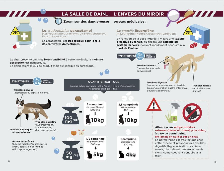 ec chiens dressage canin vous dit attention au médicament pour humain donné au chien, les medicaments sont un danger pour le chien