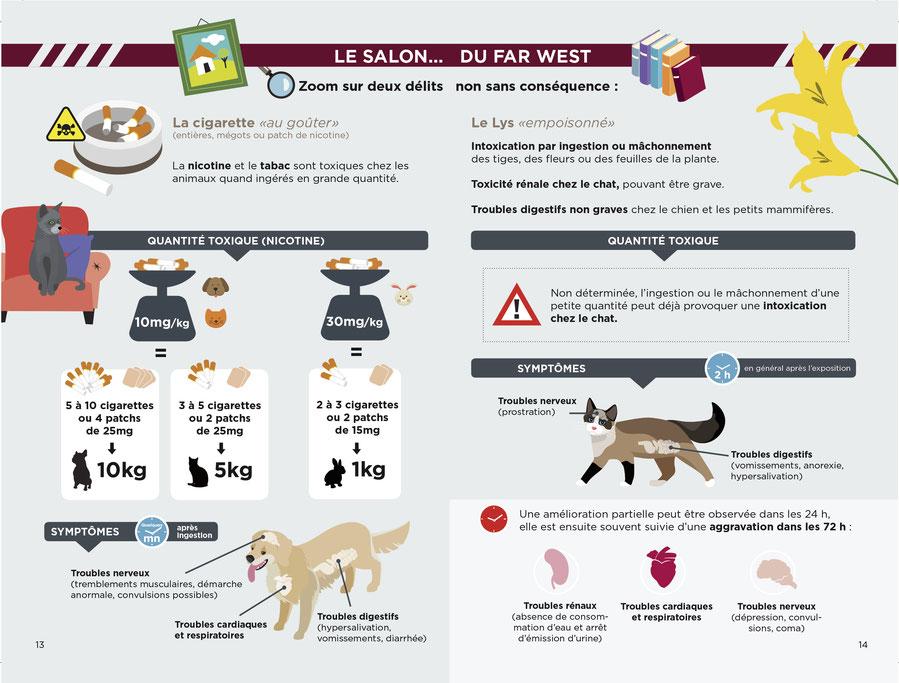 ec chiens rappel que les cigarettes ne sont pas bonnes pour les chiens, la nicotine est dangereuse pour les chiens. Attention tabac danger chien