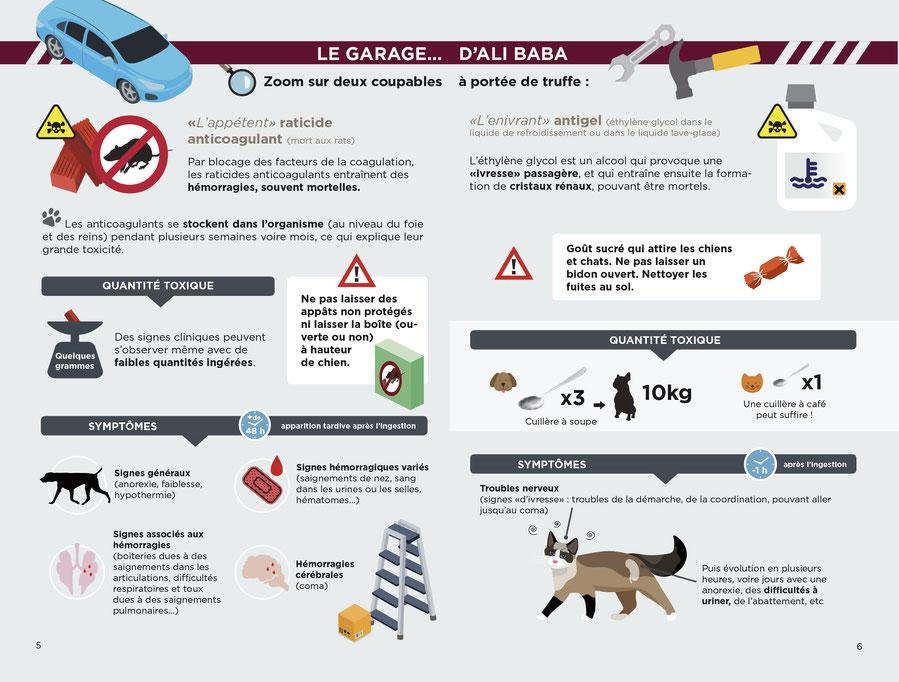 Educateur canin ; comportementaliste canin ; laboratoire TMV ; intoxication chien ; empoisonnement chien ; aliment toxique chien ; plantes toxiques chiens ; poison chien ; centre antipoison ; chocolat chien ; education canine ; franche comté ; doubs 25