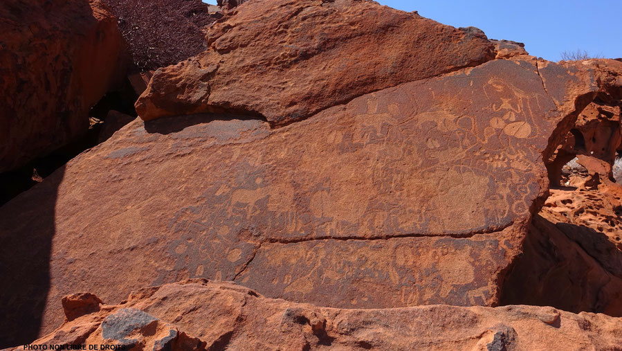 Bestiaire fantastique, Twyfelfontein, photo non libre de droits