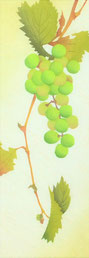 Grape-1   40x14cm
