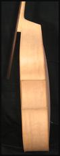 éclisse contrebasse blanche