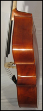 profil contrebasse