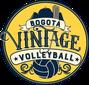 VINTAGE VOLLEYBALL