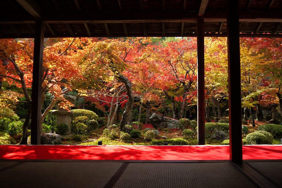 Enko-ji Buddhist Temple in autumn.