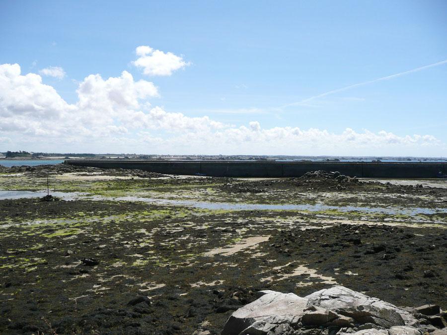 Le mole, à basse mer, vu depuis l'îlot de Kernoc'h