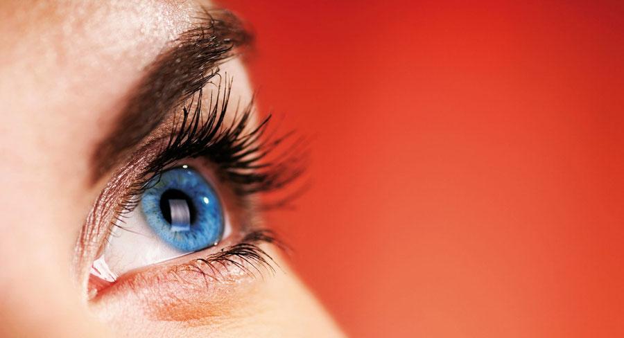 explications de quelques erreurs de réfractions - hypermetropie, astigmate, myopie