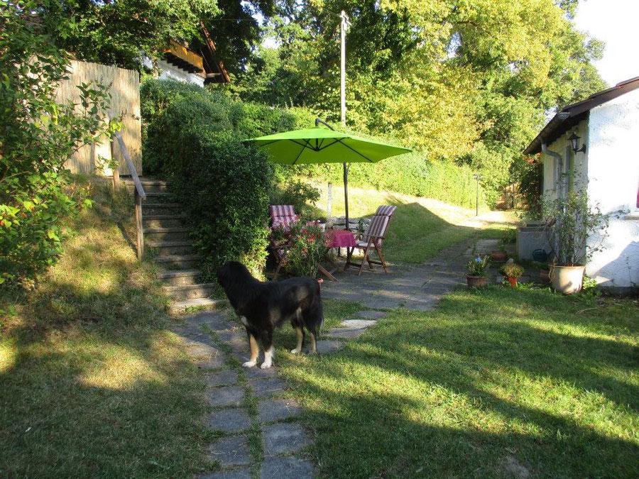 Garten - Blick auf die Treppe (Zugang von oben) - Der Garten ist von Aussen für Fremde nicht einsehbar