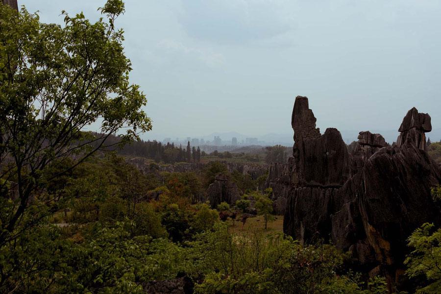 Steinwald mit Kunming im der Ferne, Steinwald, Kunming, China