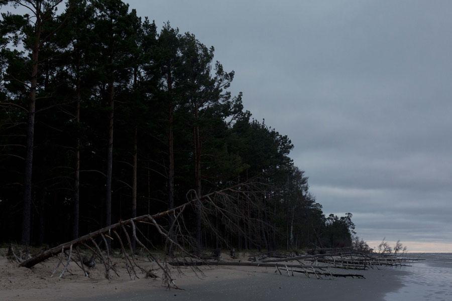 Strand, Kolka, Lettland
